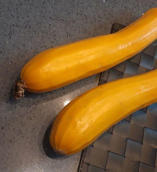 Courgettes jaunes moyennes